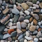 Pedra nos rins pode ser prevenida e tratada com Alimentos