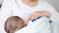 5 Alimentos Que Promovem a Produção do Leite Materno
