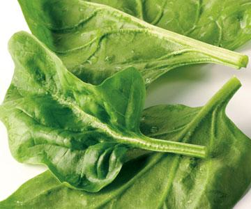 Alimentos com maior proporção de ômega-3 em relação a ômega-6